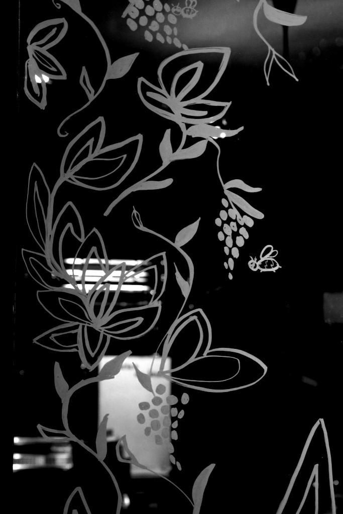 vitrine pipelettes hiver16 608