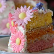 LAyer cake rainbow 052
